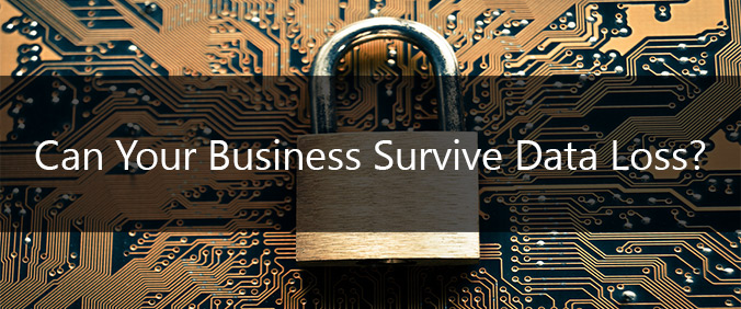 Can Your Business Survive Data Loss?